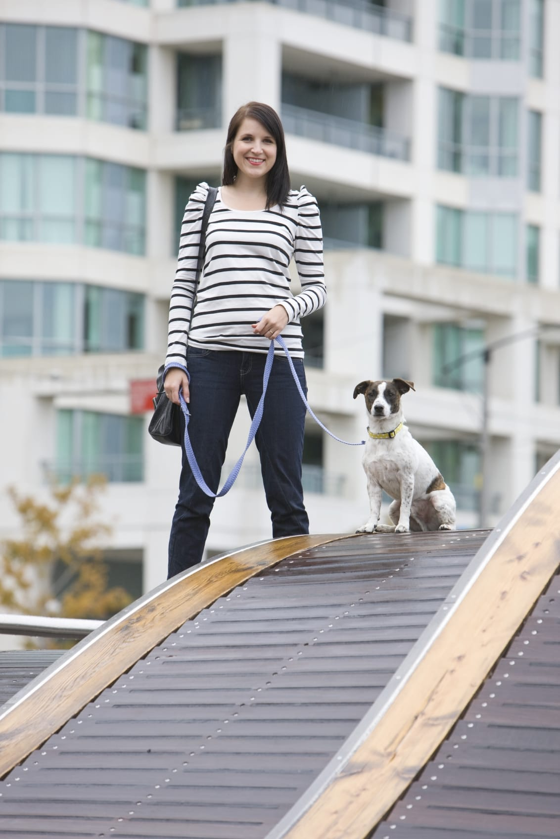Pets & Apartments for Rent